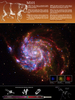 Constellation Poster: M101